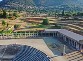 Εκδήλωση απόδοσης στο κοινό του νέου στεγάστρου στη βορειοανατολική στοά του Γυμνασίου της Αρχαίας Μεσσήνης
